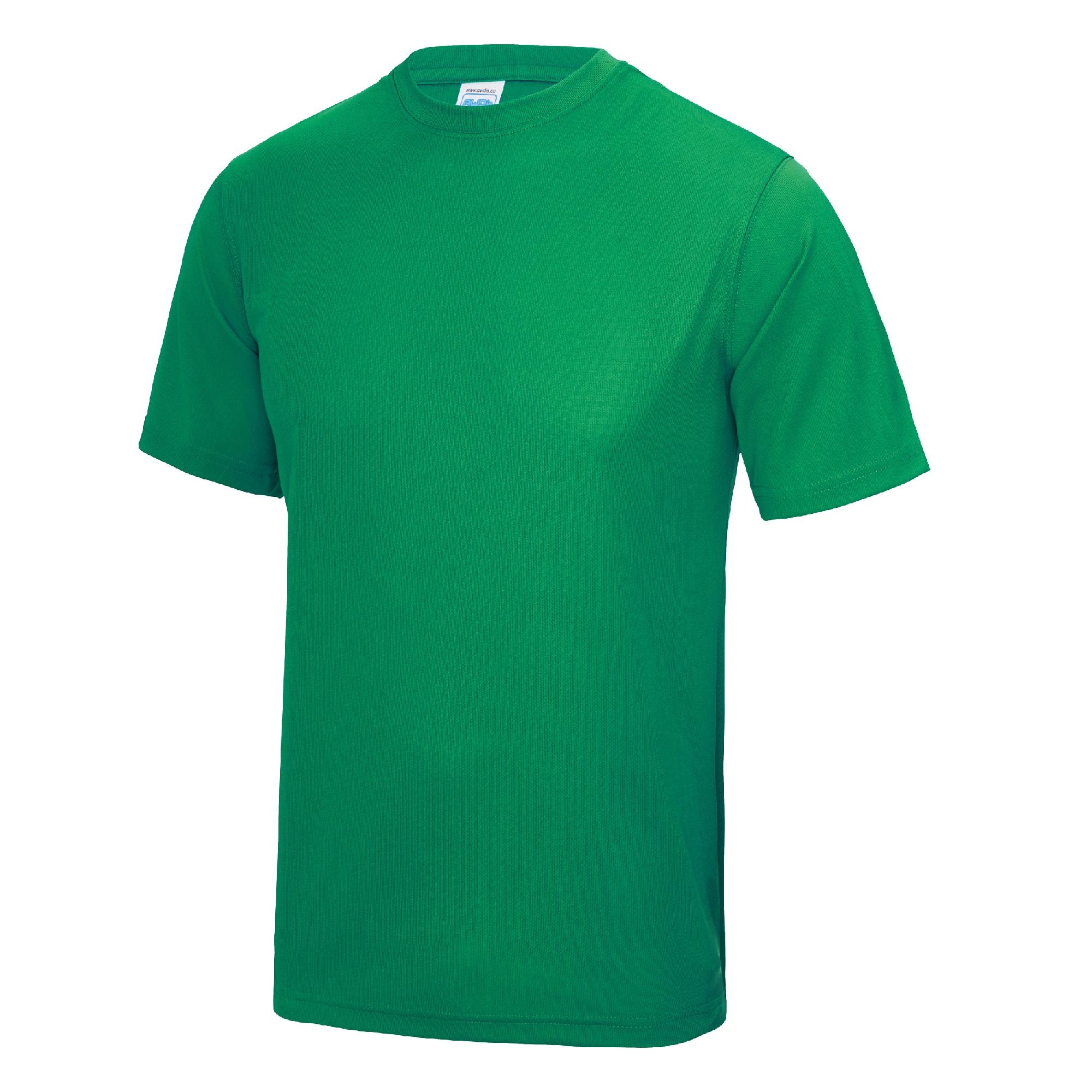 AWDis Kids Short Sleeve Cool T Shirt Kelly 12-13